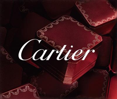魅せる万年筆が欲しいなら高級宝飾品ブランドのカルティエがオススメ
