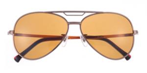 http://ptolemy48.jp/eyewear/36/ 引用