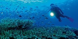 https://www.rolex.com/ja/science-and-exploration/exploration-underwater.html 引用