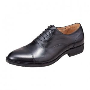 (引用: http://www.moonstar.co.jp/product/shoessearch.php?brand_cd=worldmarch)