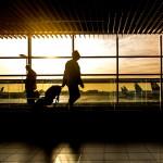 引用:https://pixabay.com/en/airport-man-travel-traveler-1822133/