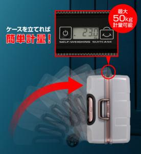 引用:http://product.tands-luggage.jp/function/function_img_meter.jpg