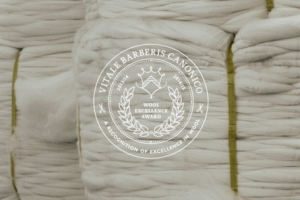 引用:http://www.vitalebarberiscanonico.it/upload/blocchi/th_X548foto1-1X_Award_wool_excellence6.jpg